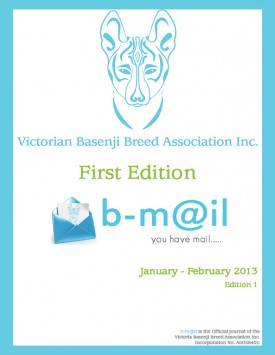 January -February 2013