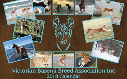 Basenji Calendar