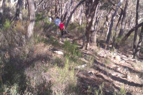 The downward treck